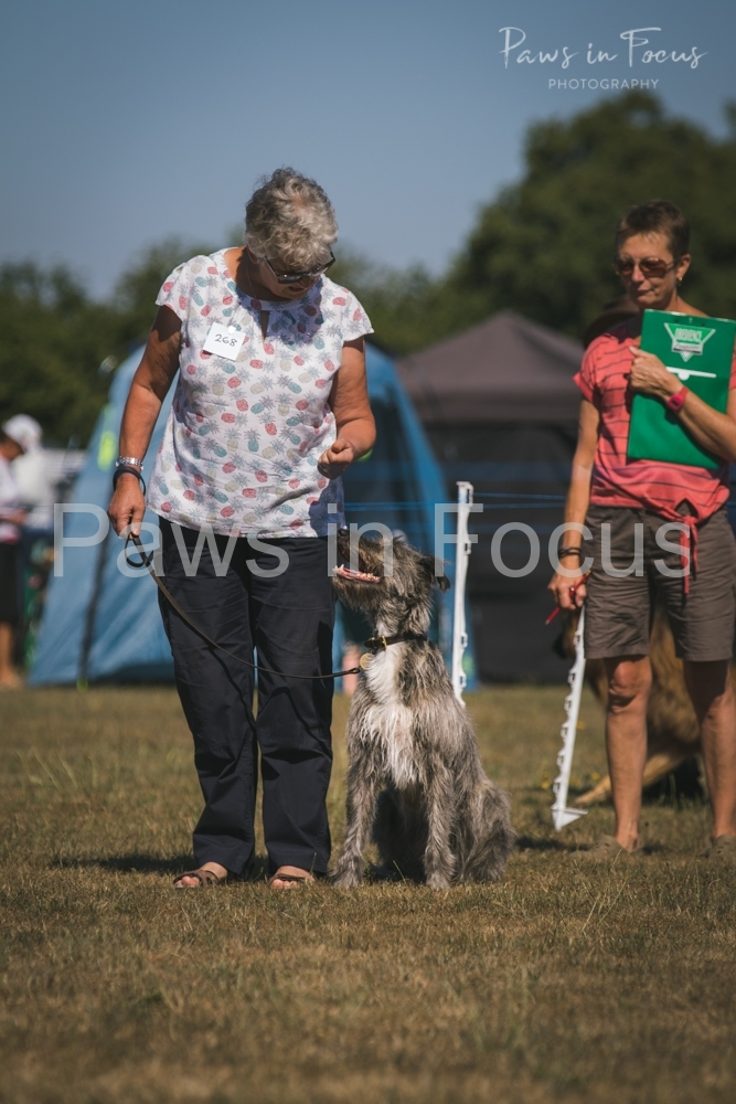 Andover Obedience Show 2018-12