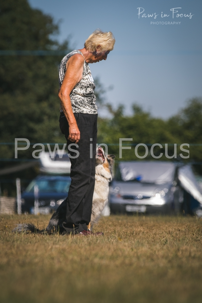 Andover Obedience Show 2018-22