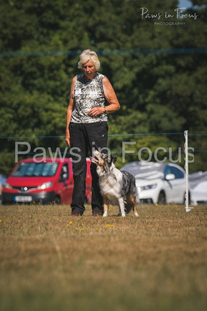 Andover Obedience Show 2018-23