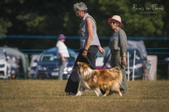 Andover Obedience Show 2018-18-Edit