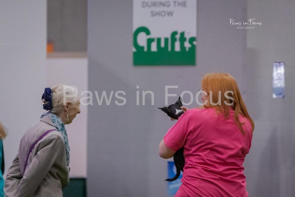 2020-Crufts-222